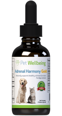 PW Adrenal Harmony Gold - Discover Dogs Inc