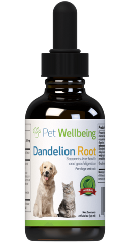 PW Dandelion Root - Discover Dogs Inc