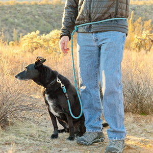 Mountain Dog Amazing Leash Versatile 7' - Discover Dogs Inc
