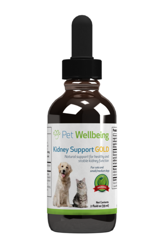 PW Kidney Support Gold - Discover Dogs Inc