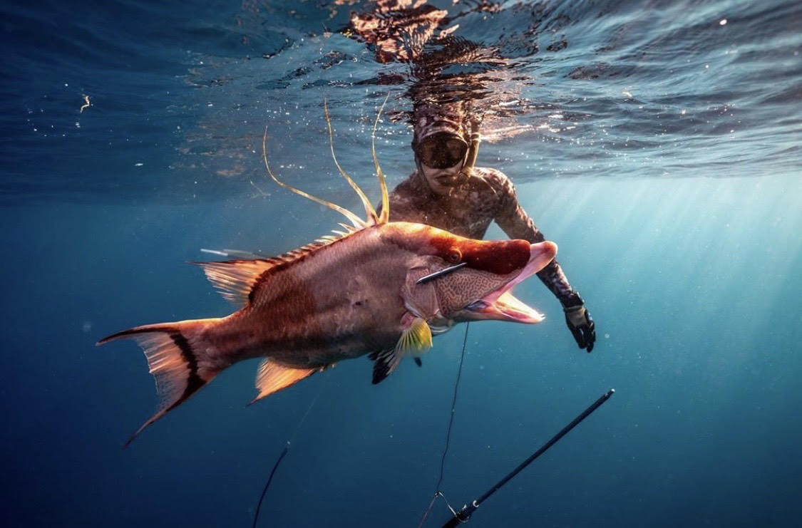 Spearfishing with Chad Bagwell Headhunter Spearfishing Polespear