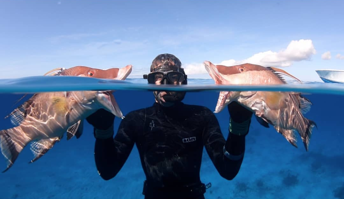 Polespear, Hog Fish, Headhunter Spearfishing, Spearfishing, Freediving,