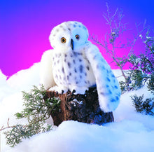 Load image into Gallery viewer, Folkmanis Snowy Owl Puppet