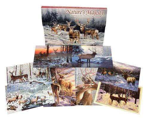 Leanin Tree Nature's Majesty Christmas Cards Assortment #90222
