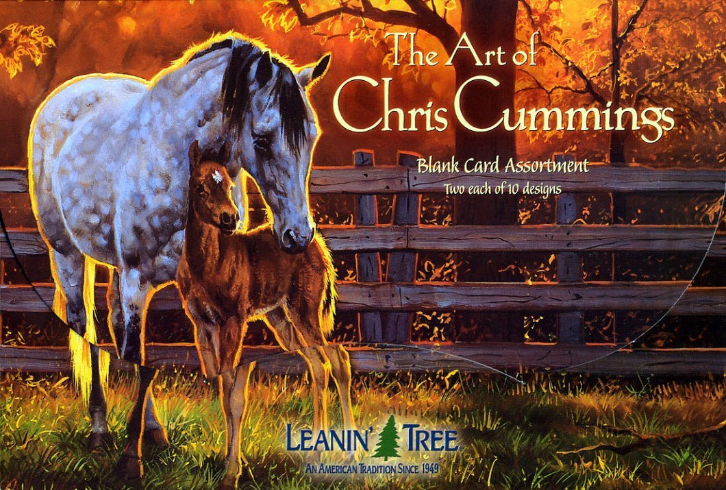 Leanin Tree The Art of Chris Cummings Greeting Cards Assortment #90630