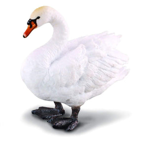 Reeves Collecta Mute Swan