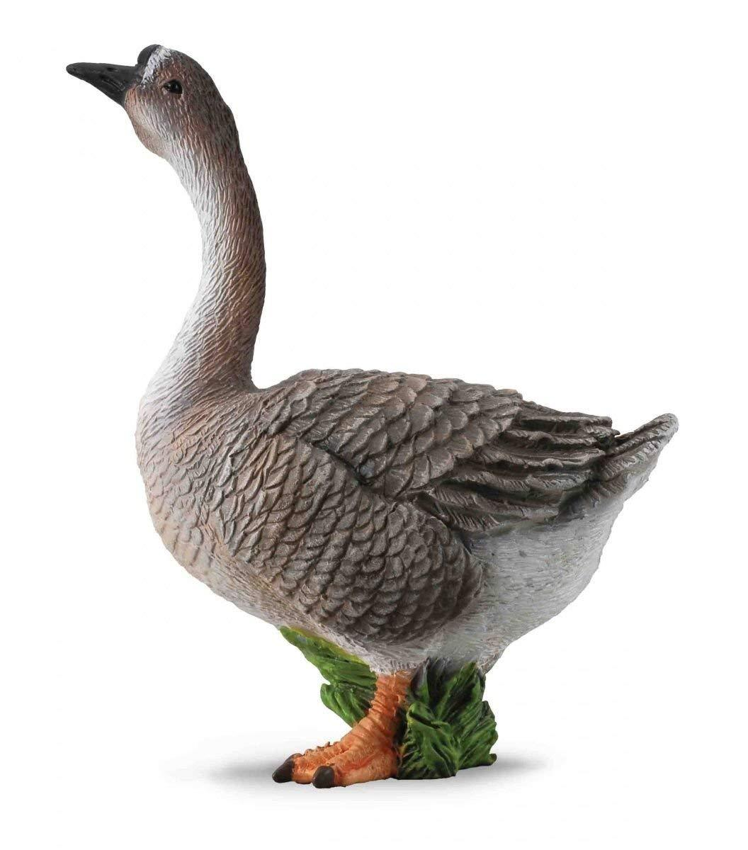 Reeves Collecta Goose