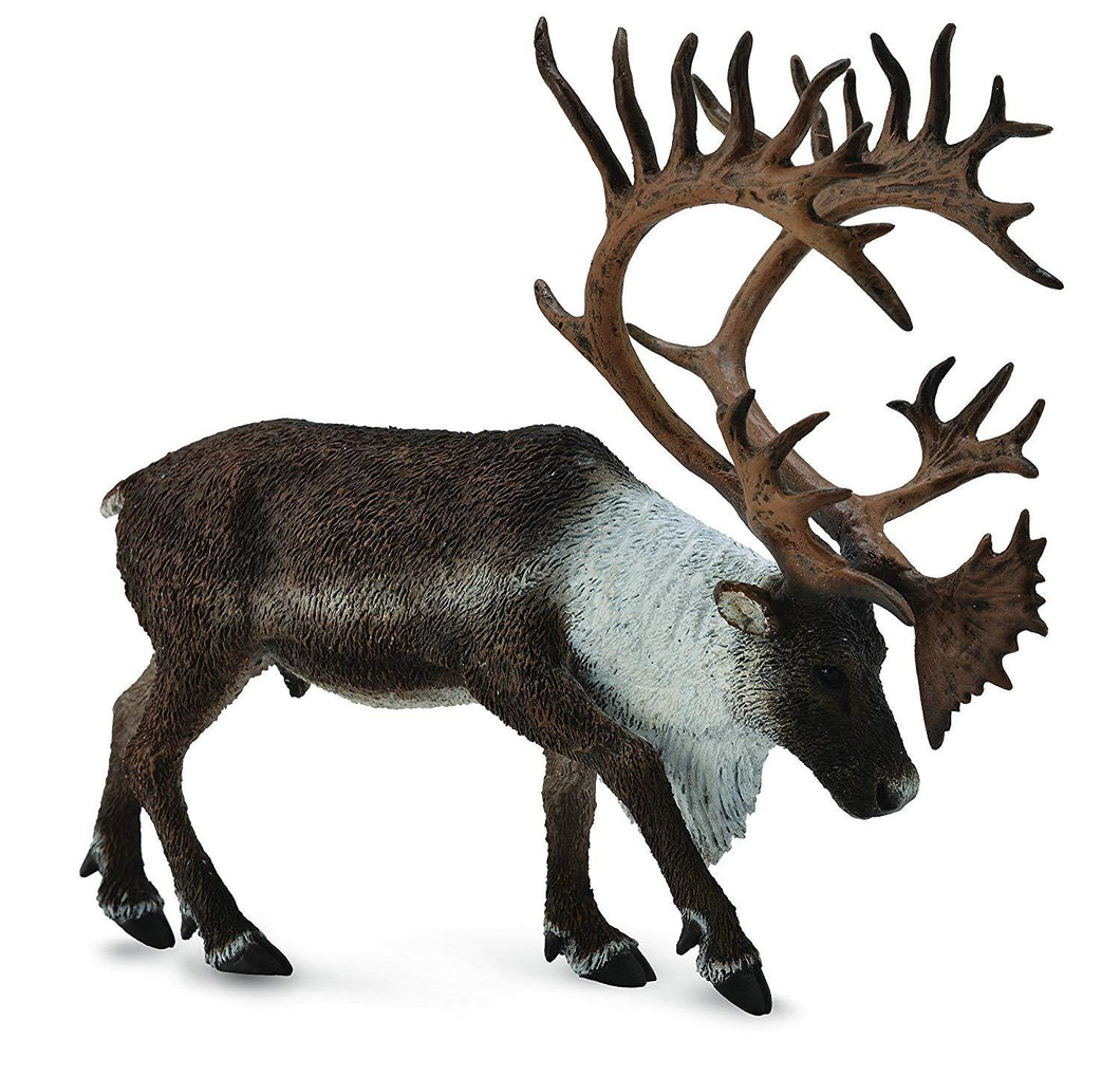 Reeves Collecta Woodland Caribou