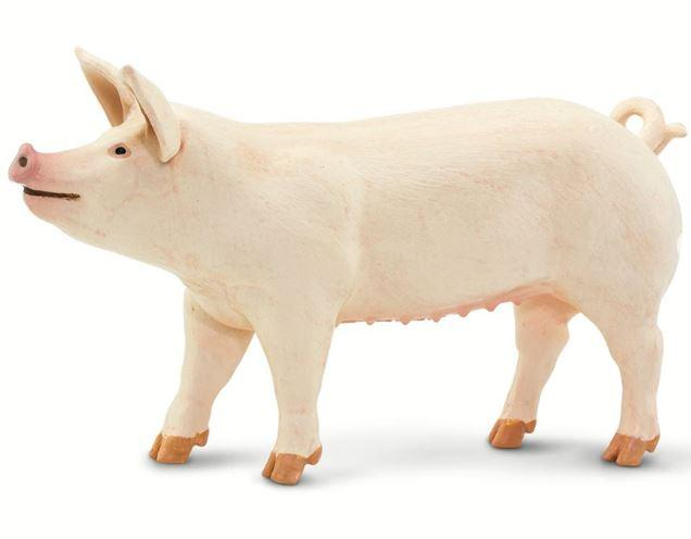 Safari Large White Pig Figure