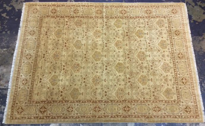 Traditional 9 x 12 Beige Rug #6738