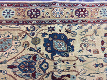 Load image into Gallery viewer, Oriental 9 x 12 Ivory, Multi-Color-Color Rug #7716