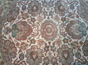 Traditional 6 x 9 Ivory Rug #14306
