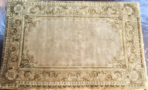 Traditional 6 x 9 Gold Rug #7432