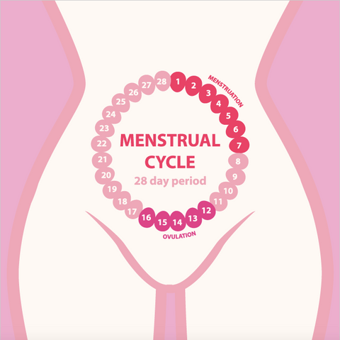 menstrual-cycle-happy-woman