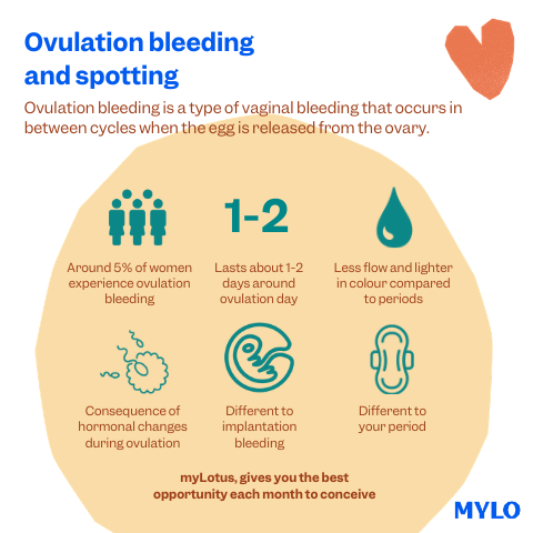 When does ovulation spotting occur