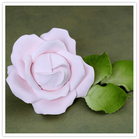 Handmade Gumpaste Cabbage Rose