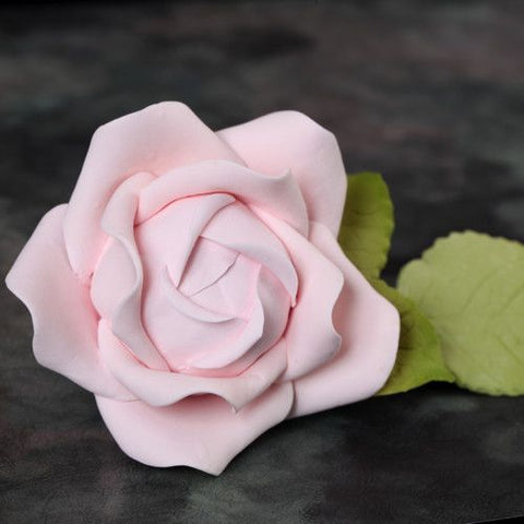 Medium Cabbage Roses & Leaves - Pink