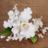 Tropical Cattleya Orchid Sprays