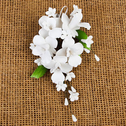 Cooktown Orchid Sprays - White