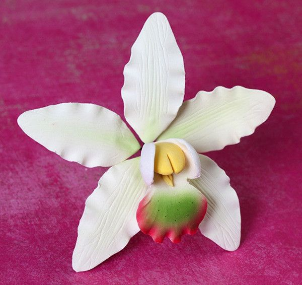Dendrobium Orchids are gumpaste sugarflower cake decorations perfect as cake toppers for cake decorating fondant cakes and wedding cakes. Caljava wholesale cake supply.
