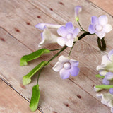 Asian Stephanotis Fillers - Lavender