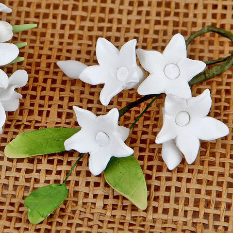 Asian Stephanotis Fillers - White