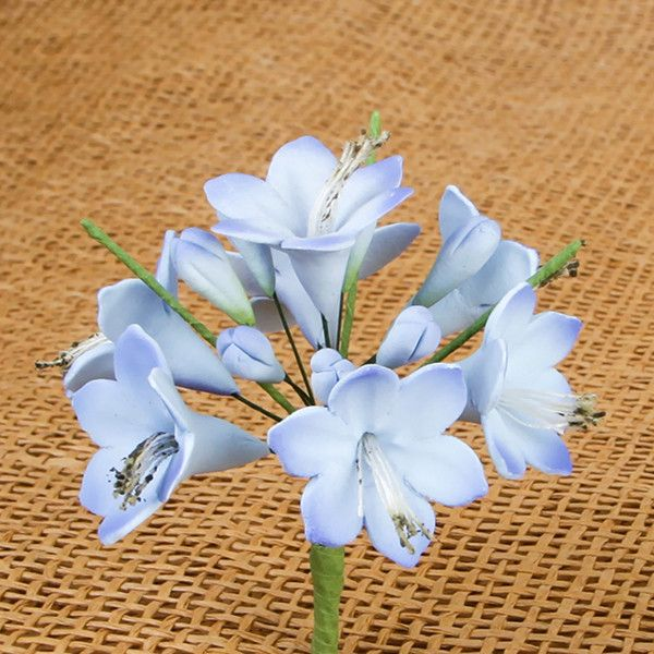 Agapanthus Bunches are gumpaste sugarflower cake decorations perfect as cake toppers for cake decorating fondant cakes and wedding cakes. Caljava wholesale cake supply.