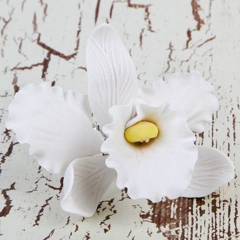 Small Cooktown Orchid Sprays in White are gumpaste sugarflower cake decorations perfect as cake toppers for cake decorating fondant cakes and wedding cakes. Caljava wholesale cake supply.