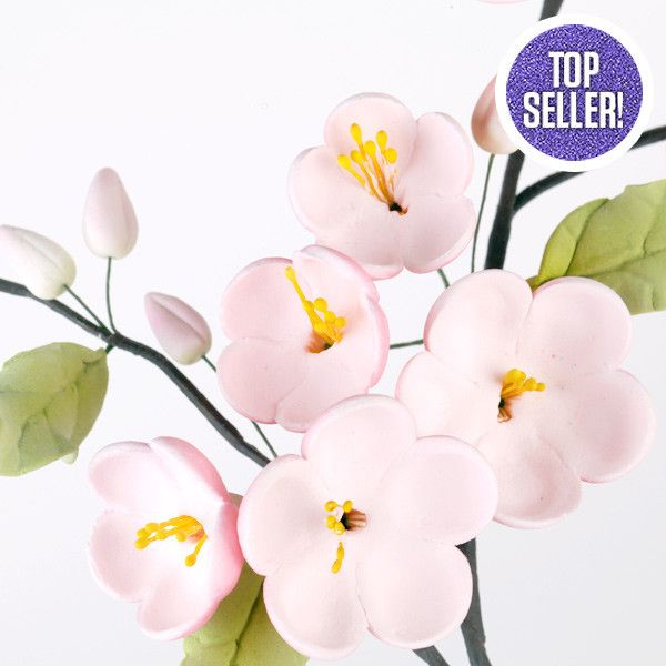 These beautiful Apple blossom sugarflower cake toppers are great for cake decorating baby showers, wedding; Readymade by hand from gumpaste. Cake Decorations.  Wholesale cake supply. Caljava