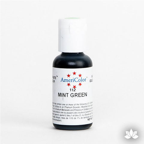 Mint Green AmeriColor Soft Gel Paste Food Color is perfect for coloring buttercream, icing, and fondant for decorated cakes and cupcakes. Wholesale edible food coloring.