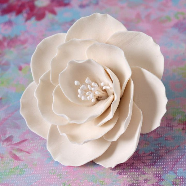 Medium Ivory Gumpaste Briar Rose handmade cake decoration.