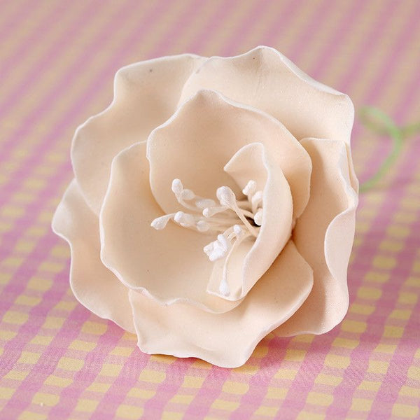 Small Ivory Gumpaste Briar Rose handmade cake decoration.