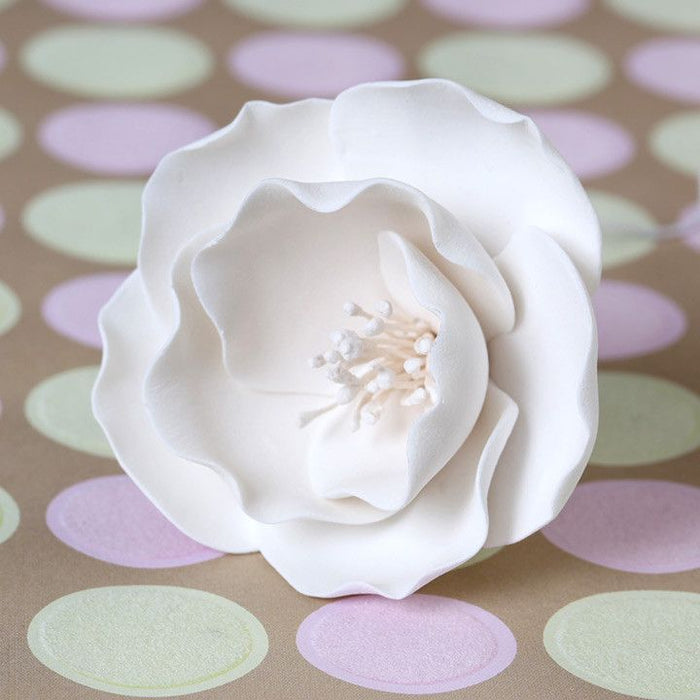 Small White Gumpaste Briar Rose handmade cake decoration.