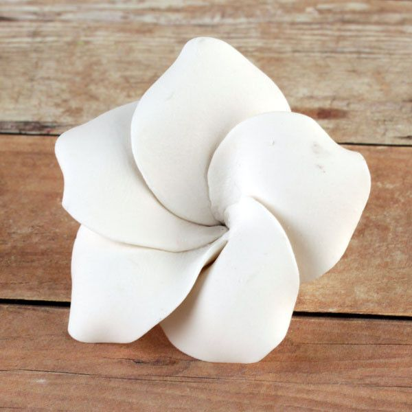 White gumpaste flower plumeria edible handmade cake & cupcake decoration.