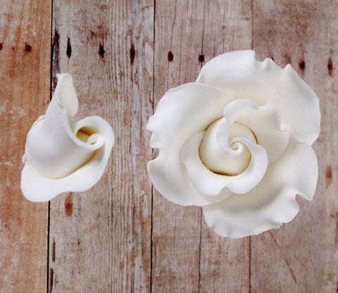 English Rose Blooms & Buds - White