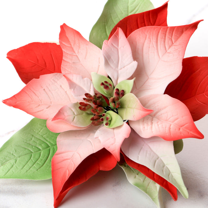 Poinsettia Gum Paste Sugar Flowers great as a cake topper for cake decorating your own holiday cakes. Perfect cake decoration for Christmas cakes and pies.