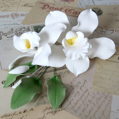 White Cymbidium Orchid Sprays