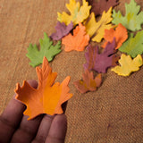 Individual Fall Leaf - Assorted Colors