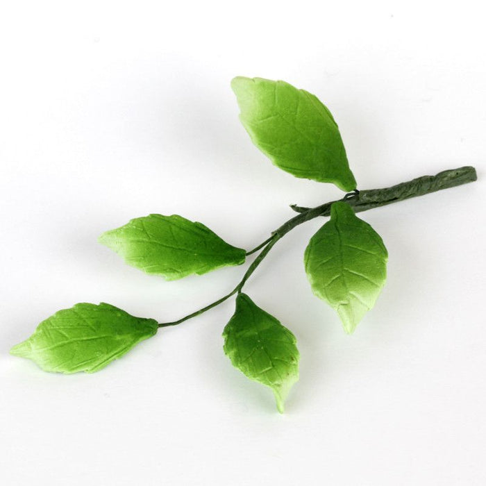 5 Green Leaf Filler sugarflower from gumpaste perfect for cake decorating fondant cakes and wedding cakes. Wholesale sugarflowers and cake supply.