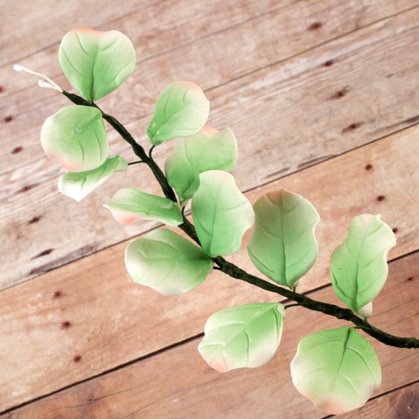Eucalyptus Leaves sugarflowers perfect for cake decorating fondant cakes and pairing with sugarflowers.  Wholesale cake supply.