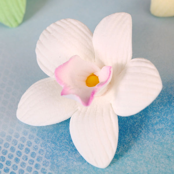 White Mini Cymbidium Orchids Cake & Cupcake Decorations handmade from gumpaste.