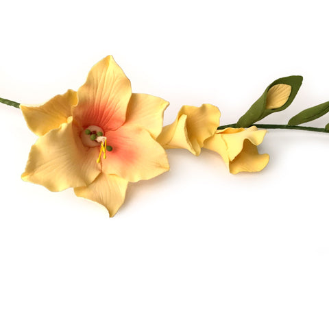 Gladiolus Sprays - Yellow