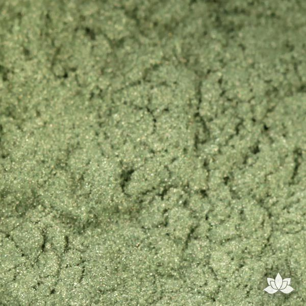 Grass Green Luster Dust colors for cake decorating fondant cakes, gumpaste sugarflowers, cake toppers, & other cake decorations. Wholesale cake supply. Bakery Supply. Lustre Dust Color.