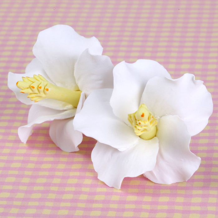 White Hibiscus sugarflower from gumpaste perfect for cake decorating fondant cakes and wedding cakes. Wholesale sugarflowers and cake supply.