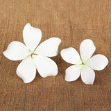 Hawaiian Bloomed Plumerias - White