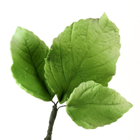 Green Hydrangea Leaves Sugarflowers made from gumpaste perfect as cake toppers for fondant wedding cakes.  Wholesale sugarflower cake decorations.