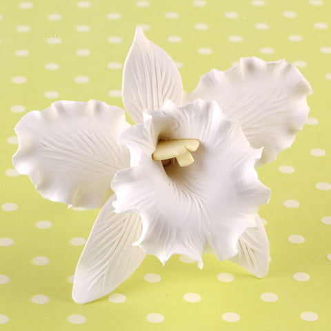 Edible Gumpaste Large White Cattleya sugar flower cake toppers and cake decorations perfect for cake decorating rolled fondant wedding cakes, cupcakes and birthday cakes and cupcakes.  Edible Cake Decoration and wholesale cake supplies.