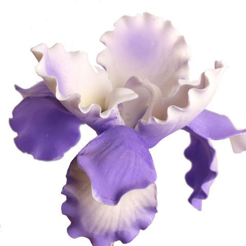 Lavender Full Bloom Dutch Iris gumpaste sugarflower cake decorations perfect as a cake toppers for cake decorating fondant cakes and wedding cakes. Wholesale sugarflowers.