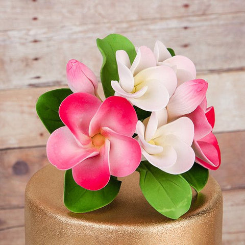 Plumeria Cake Toppers - Pink