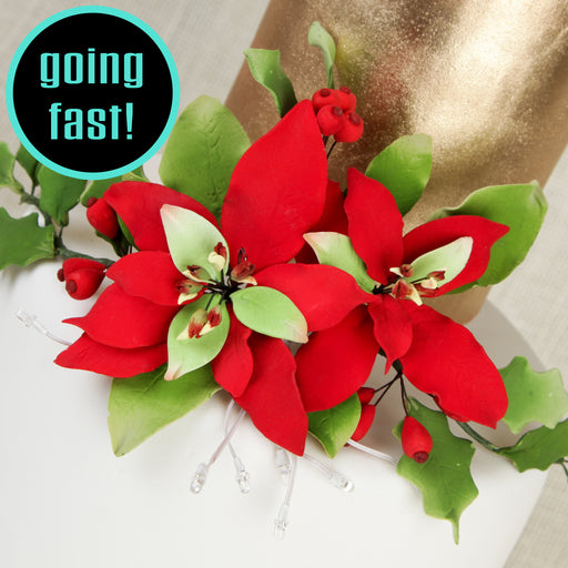 Lighted Poinsettia & Berry Sprays - Red